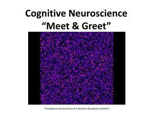 "Cognitive Neuroscience  ""Meet & Greet"""