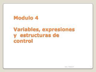 Modulo 4 Variables, expresiones  y  estructuras de control