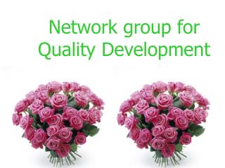 Network group for Quality Development