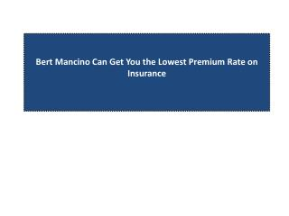 Bert Mancino Can Get You the Lowest Premium Rate on Insuranc