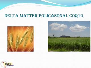 Delta Matter's Policosanol With CoQ10