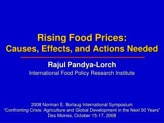 Rising Food Prices: Causes, Effects, and Actions Needed