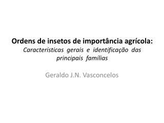 Ordens de insetos de importância agrícola:  Características  gerais  e  identificação  das  principais  famílias