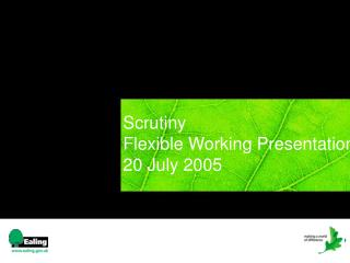 Scrutiny Flexible Working Presentation	   20 July 2005