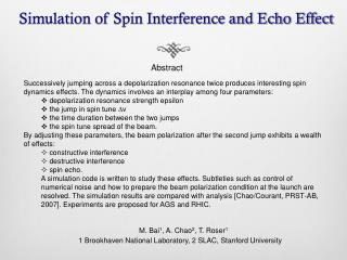 Simulation of Spin Interference and Echo Effect