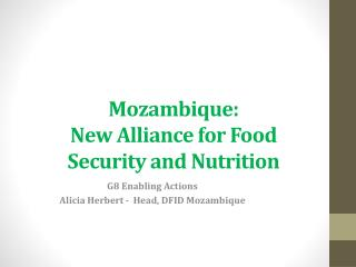 Mozambique: New Alliance for Food Security and Nutrition