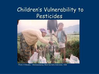 Children's Vulnerability to Pesticides