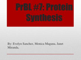 PrBL  #7: Protein Synthesis