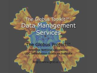 The Globus Toolkit™: Data Management Services