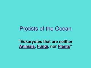 Protists of the Ocean
