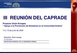 Expositor: Elsa Luengo Coordinadora SECRETARÍA GENERAL DE LA COMUNIDAD ANDINA