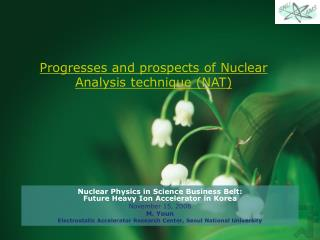 Progresses and prospects of Nuclear Analysis technique (NAT)