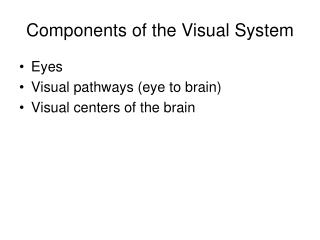 Components of the Visual System