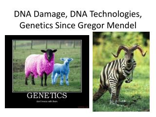 DNA Damage, DNA Technologies, Genetics Since Gregor Mendel