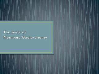 The Book of Numbers/Deuteronomy