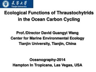 Ecological Functions of Thraustochytrids in the Ocean Carbon Cycling