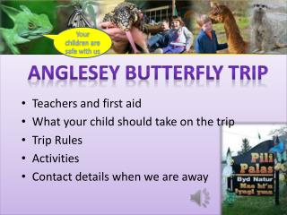 Teachers and first aid What your child should take on the trip Trip Rules Activities