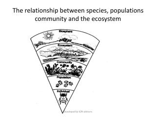 The relationship between species, populations community and the ecosystem