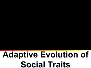 Adaptive Evolution of Social Traits