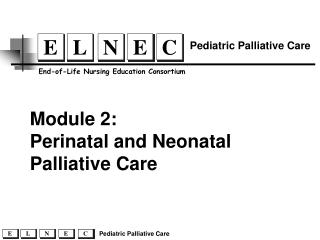 Perinatal and Neonatal Palliative Care