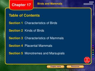 Birds and Mammals