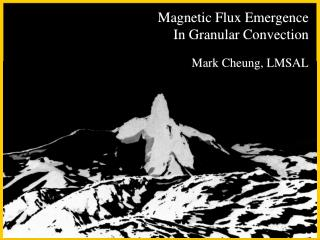 Magnetic Flux Emergence  In Granular Convection