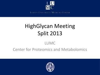 HighGlycan Meeting Split 2013