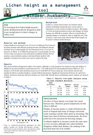 Lichen height as a management tool  in reindeer husbandry