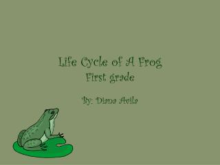 Life Cycle of A Frog First grade