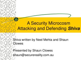 A Security Microcosm  Attacking and Defending  Shiva