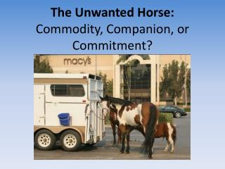 The Unwanted Horse: Commodity, Companion, or Commitment?