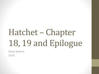 Hatchet – Chapter 18, 19  and  Epilogue
