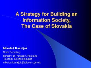 A Strategy for Building an Information Society, The Case of Slovakia