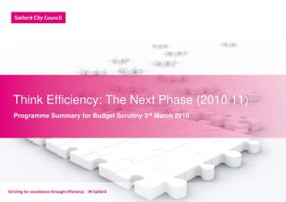 Think Efficiency: The Next Phase (2010/11)