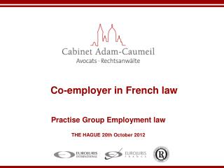 Co-employer in French law