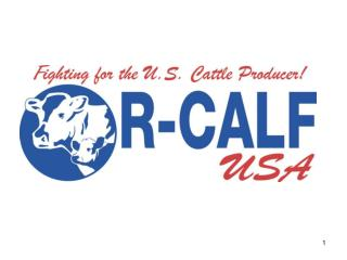 R-CALF USA Overview of International Trade and the U.S. Cattle and Beef Industries