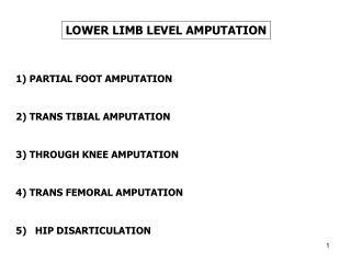 LOWER LIMB LEVEL AMPUTATION