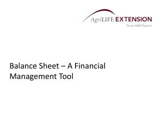 Balance Sheet – A Financial Management Tool