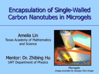 Encapsulation of Single-Walled Carbon Nanotubes in Microgels