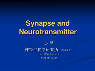 Synapse and  Neurotransmitter