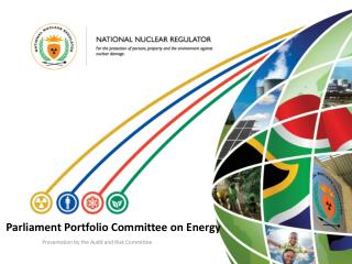 Parliament Portfolio Committee on Energy