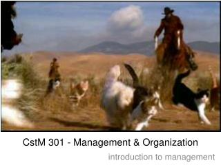 CstM 301 - Management & Organization