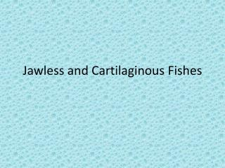 Jawless and Cartilaginous Fishes