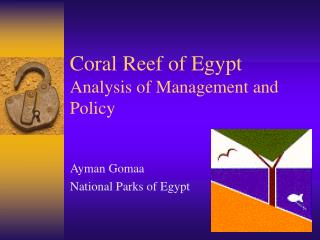Coral Reef of Egypt Analysis of Management and Policy