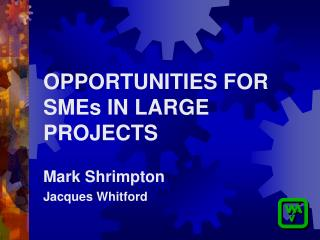 OPPORTUNITIES FOR SMEs IN LARGE PROJECTS