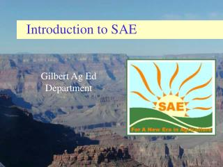 Introduction to SAE