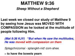 MATTHEW 9:36 Sheep Without a Shepherd