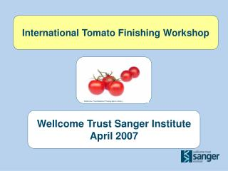 International Tomato Finishing Workshop