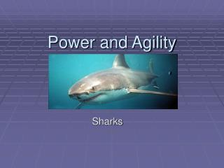 Power and Agility
