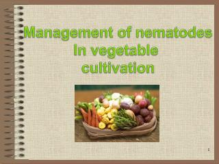 Management of nematodes In vegetable  cultivation